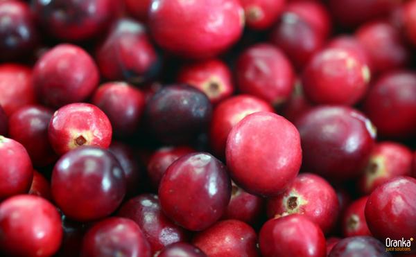 Oranka_sCranberrysap risico hartziekten en diabetes verlagen